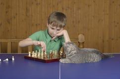 Adolescente que juega a ajedrez con un gato en una tabla del tenis Fotos de archivo