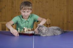 Adolescente que juega a ajedrez con un gato en una tabla del tenis Fotografía de archivo libre de regalías