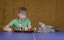 Adolescente que juega a ajedrez con un gato en una tabla del tenis Fotos de archivo libres de regalías