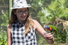 Adolescente que lleva a cabo un lorikeet colorido del arco iris Foto de archivo