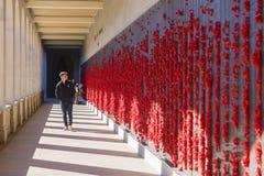 Adolescente que mira las placas de bronce en el monumento de guerra australiano Foto de archivo libre de regalías