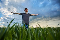 Adolescente que se coloca en un campo de trigo en la puesta del sol Imagenes de archivo