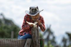 Adolescente que se sienta en la cerca que come la corteza Foto de archivo libre de regalías