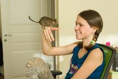 Adolescente que sostiene un animal doméstico en su mano - degus chileno de la ardilla Foto de archivo