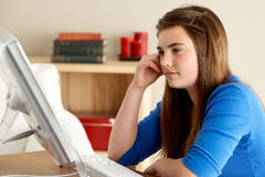 Adolescente que usa el ordenador en el país Fotografía de archivo