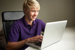 Adolescente que usa la computadora portátil en el país Imágenes de archivo libres de regalías