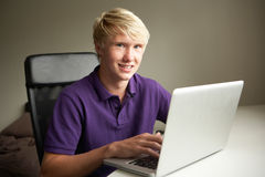 Adolescente que usa la computadora portátil en el país Fotografía de archivo libre de regalías
