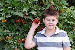 Adolescente sobre viburnum del arbusto Imágenes de archivo libres de regalías