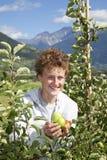 Adolescente sonriente que presenta manzanas Fotografía de archivo libre de regalías