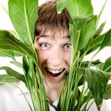 Adolescente sorprendido en hojas Fotos de archivo libres de regalías