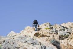 Adolescente subiendo una montaña Fotografía de archivo libre de regalías