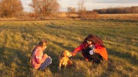 Adolescente y mamá de la muchacha que frotan ligeramente el perro junta y la risa almacen de video