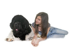 Adolescente y perro de Terranova Imágenes de archivo libres de regalías