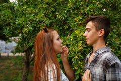 Adolescentes cariñosos de los pares junto Imagen de archivo libre de regalías