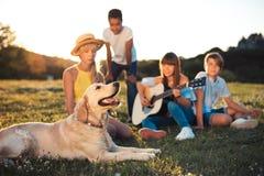 Adolescentes con el perro en parque Foto de archivo