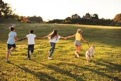 Adolescentes con el perro en parque Imágenes de archivo libres de regalías