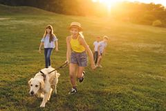 Adolescentes con el perro que camina en parque Foto de archivo