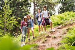 Adolescentes con las mochilas que caminan en vacaciones de verano del bosque Imágenes de archivo libres de regalías