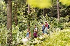Adolescentes con las mochilas que caminan en vacaciones de verano del bosque Imagen de archivo