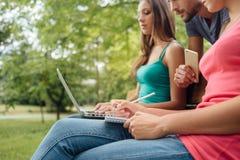 Adolescentes en el parque que estudian junto Imágenes de archivo libres de regalías