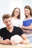 Adolescentes en la lección de la biología Fotos de archivo