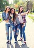 Adolescentes felices jovenes que hacen el selfie y que se divierten en parque del verano Fotografía de archivo libre de regalías