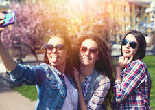 Adolescentes felices jovenes que hacen el selfie y que se divierten en parque del verano Imagen de archivo