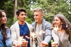 Adolescentes hermosos en bosque con las bengalas Fotos de archivo