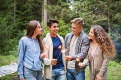 Adolescentes hermosos en bosque con las bengalas Fotografía de archivo