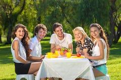 Adolescentes jovenes sanos que disfrutan de una comida campestre del verano Fotos de archivo