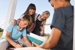 Adolescentes multiétnicos que estudian junto Imágenes de archivo libres de regalías