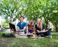 Adolescentes que estudian en césped del campus Foto de archivo