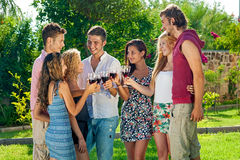 Adolescents célébrant un grillage avec du vin Photo stock