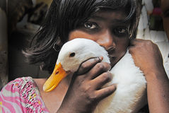 Adolescents girl in India. A adolescents girl with her swan royalty free stock photo