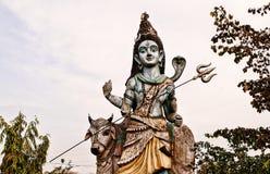 Adolscent Shiva con il suo giro Immagine Stock