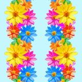 adonis Naadloze patroontextuur van bloemen Bloemen achtergrond, vector Stock Fotografie
