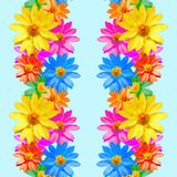 adonis Struttura senza cuciture del modello dei fiori Priorità bassa floreale, vettore Fotografia Stock