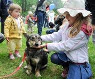 Adopción del animal doméstico Foto de archivo libre de regalías
