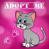 Adopt Cat Indicates Adoption Felines And Pet Stock Photo