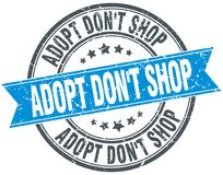 Adopt don`t shop blue round grunge ribbon stamp. Adopt don`t shop blue round grunge vintage ribbon stamp vector illustration