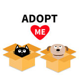 Adopt me. Dont buy. Dog Cat inside opened cardboard package box. Pet adoption. Puppy pooch kitty cat looking up to red heart. Flat Royalty Free Stock Photo