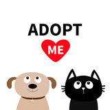 Adopt me. Dont buy. Dog Cat Pet adoption. Puppy pooch kitty cat looking up to red heart Stock Images