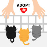 Adopt me. Three kittens looking up to human hand. Nursery cage aviary. Cute cartoon funny character. Animal hug. Helping hands con. Cept. Red heart. Flat design Royalty Free Stock Photos
