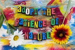 Adopt patience nature natural world. Adopt the patience of nature relax natural world mother earth day love life success flowers artist design background royalty free stock photos