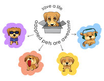 Adopt a pet vector illustration. Nice sad puppy in a box and the same puppy happy when adopted Royalty Free Stock Images