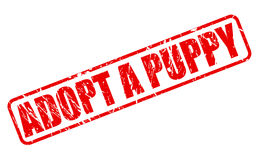 ADOPT A PUPPY red stamp text Royalty Free Stock Photography