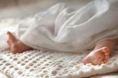 Legs of a newborn abandoned child stock photography