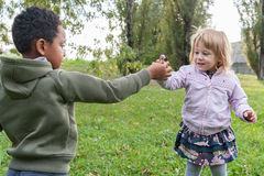 Adoptivbrüder tauschen eine Blume aus Stockbild