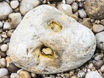 Adoquín y guijarro en la playa del canal inglés Fotos de archivo