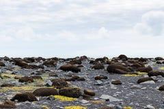 adoquines en la playa de Reynisfjara en Islandia Imagenes de archivo